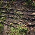 Tyre Tracks 019