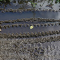 Tyre Tracks 025