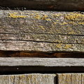 Wood Planks Old 049