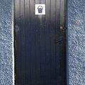 Door Wooden 006