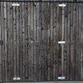 Door Wooden 002