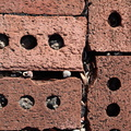 Bricks Modern 023