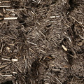 Debris Wood Chips 008