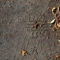 Tyre Tracks 048