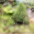 Water Waterdrops 029