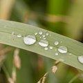 Water Waterdrops 015