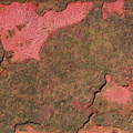 Rust Painted 026