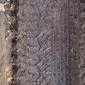 Tyre Tracks 064