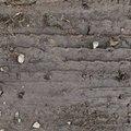 Tyre Tracks 067