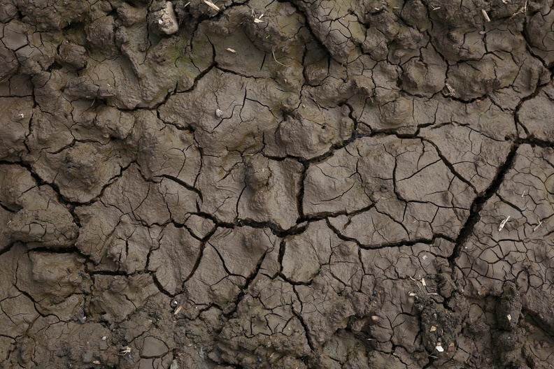 Soil_Cracked_015.JPG
