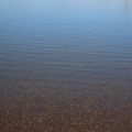 Water Freshwater 019