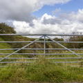 Fence Metal Gate 016