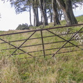 Fence Metal Gate 013