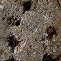 Concrete Damaged 041