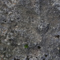 Rock Stone 105