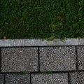 Tiles Outdoor 087