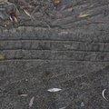 Tyre Tracks 082