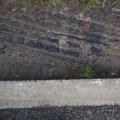 Tyre Tracks 078
