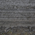 Tyre Tracks 080