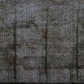 Wood Plain 019