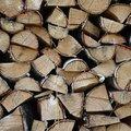 Wood Logs 007