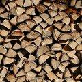 Wood Logs 004