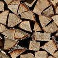 Wood Logs 005