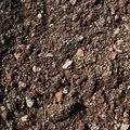 Soil 016