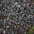 Ground Stones 022