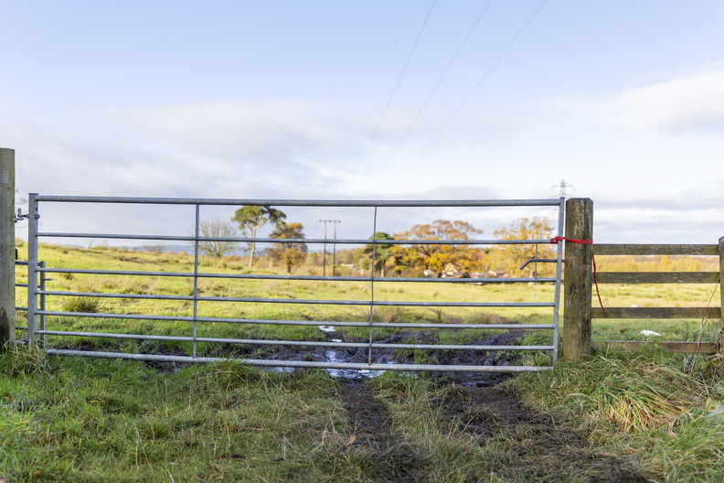Fence_Metal_Gate_020.JPG