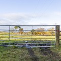 Fence Metal Gate 020