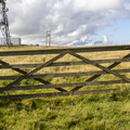 Fence Wooden Gate 003