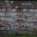 Bricks Damaged 014