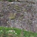 Rock Cliff 004