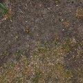 Soil 018