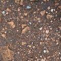 Soil Stoned 029