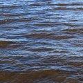 Water Sea 031