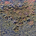Rust Painted 047