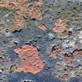 Rust Painted 053
