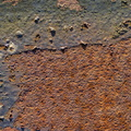 Rust Painted 054