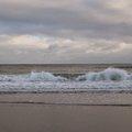 Sea Edge 008