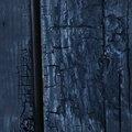 Wood Burned 012