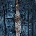 Wood Burned 013