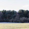 Nature Edge 051