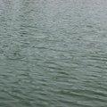 Water Freshwater 031