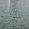 Water Freshwater 028