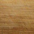 Wood Plain 023