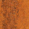 Rust Completely 092