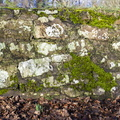 Wall Stone 100