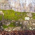 Wall Stone 079